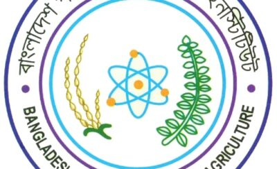 BINA logo