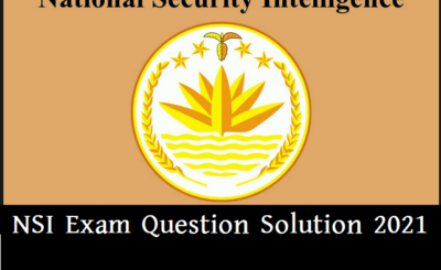 NSI logo